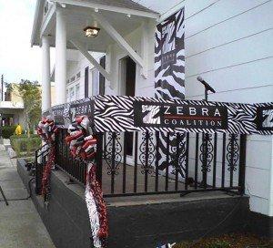 Zebra Coalition