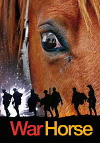 """War Horse"" is now being performed at the Bob Carr Performing Arts Centre in Orlando."