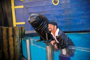 Sunday is the final day for SeaWorld's Clyde and Seamore show.