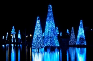 SeaWorld Orlando is now looking for seasonal help for the holiday season.