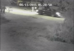 The Polk County Sheriff's Office released this photo from video surveillance cameras of the car believed to have been involved in a murder case in Lake Alfred.
